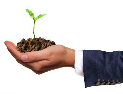 Bæredygtig ledelse